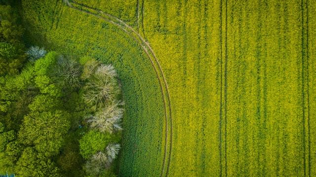 droni-agricoltura